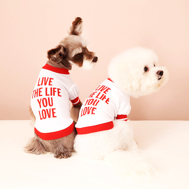 Live the life you love - Pet